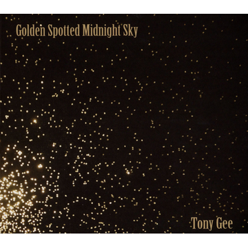 Tony Gee Golden Spotted Midnight Sky