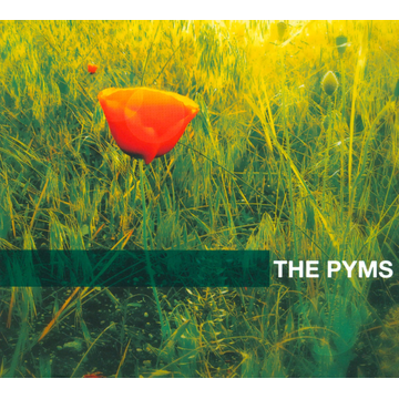 The Pyms Summer Of Love