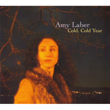 Amy Laber Cold, Cold Year