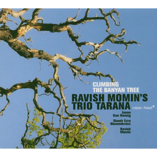 Ravish Momin Trio Tarana Climbing the Banyan Tree