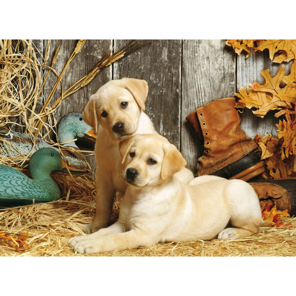 - Clementoni Hunting Dogs Jigsaw puzzle 1500 pc(s)