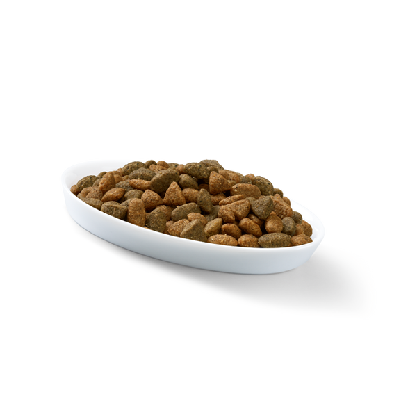 - Perfect Fit Junior cats dry food 750 g Adult Chicken