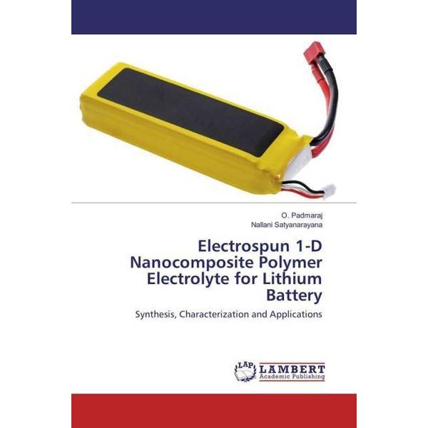 Padmaraj, O. - Electrospun 1-D Nanocomposite Polymer Electrolyte for Lithium Battery - Synthesis, Characterization and Applications