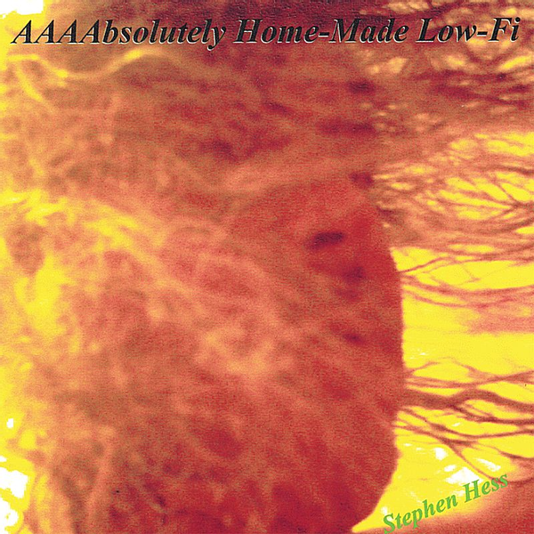 Stephen Hess Aaaabsolutely Home-Made Low- Fi