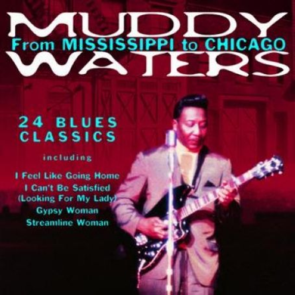 Muddy Waters - From Mississippi to Chicago