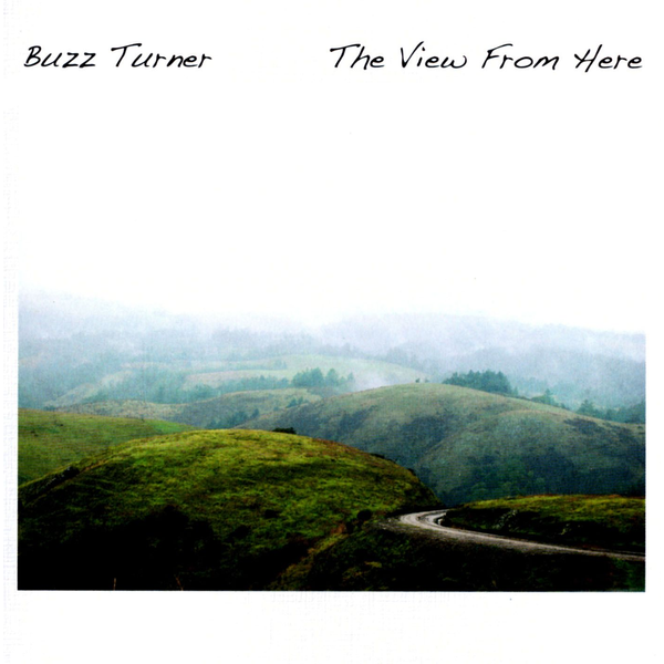 Buzz Turner - View from Here