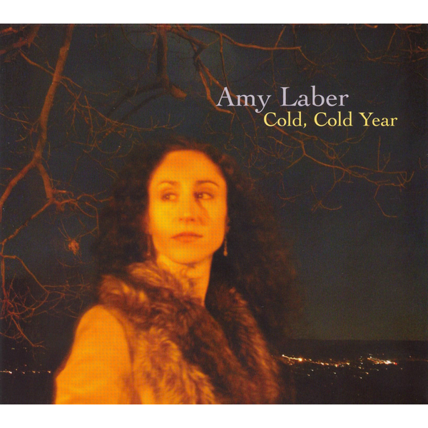 Amy Laber - Cold, Cold Year
