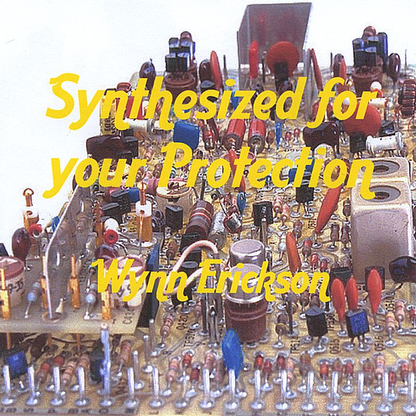 Wynn Erickson - Synthesized for Your Protection