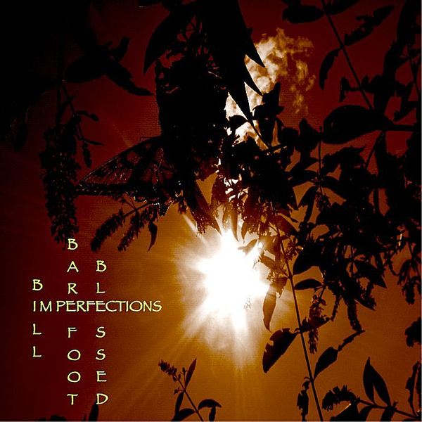 Bill Barefoot - Blessed Imperfections