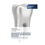 Assessment of Apical Root Resorption during Anterior Retraction - Root Resorption from molar to molar