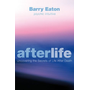 Allen & Unwin Afterlife book Health, mind & body English Paperback 304 pages