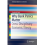 Why Bank Panics Matter - Cross-Disciplinary Economic Theory