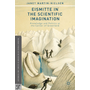 Eismitte in the Scientific Imagination - Knowledge and Politics at the Center of Greenland