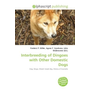 Interbreeding of Dingoes with Other Domestic Dogs
