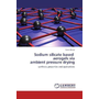 Sodium silicate based aerogels via ambient pressure drying - synthesis, properties and applications