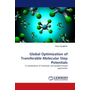 Global Optimization of Transferable Molecular Step Potentials - A combination of stochastic and gradient-based approaches