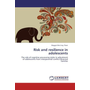 Risk and resilience in adolescents - The role of cognitive processing styles in adjustment of adolescents from interparental conflict divorced families