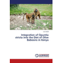 Integration of Opuntia stricta into the Diet of Olive Baboons in Kenya