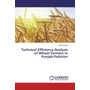 Technical Efficiency Analysis of Wheat Farmers in Punjab-Pakistan