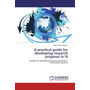A practical guide for developing research proposal in IS - A guide for developing research proposal in information systems