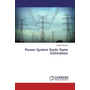 Power System Static State Estimation