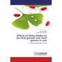 Effects of Ginko biloba on the fetal growth and renal genesis in rats - A histomorphometric study
