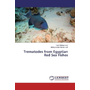 Trematodes from Egyptian Red Sea Fishes