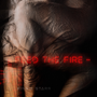 Feed the Fire